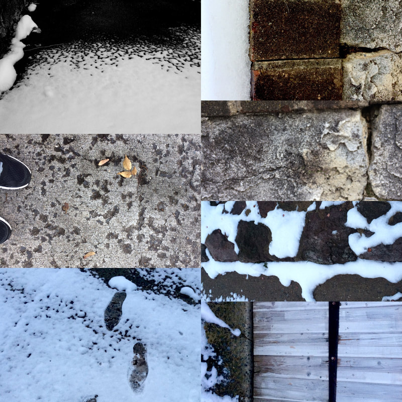 DL Rigter Winter Collage